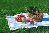wine and fruit basket , picnic  and summer vacation concept