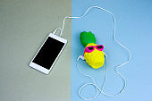 top view flat lay cute pineapple in sunglasses and smartphone on a green and blue background
