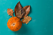 pumpkin and autumn leaves  on a blue background