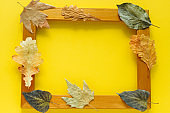 golden  frame with autumn  leaves with free space for text on yellow background