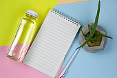 water bottle, empty white paper sheet, pen and succulent plant in concrete pot on a vibrant background