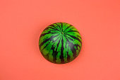 anti stres squishy toy watermelon on a coral background