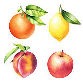 Set of hand drawn orange, lemon, peach and apple with leaves. Isolated watercolor illustration of fruit.