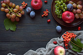 Autumn still life for thanksgiving with autumn fruits and berries on wooden background - grapes, apples, plums, viburnum, dogwood. Raw food. Copy space