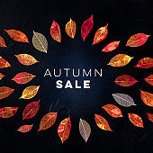 Autum Sale square discount banner or flyer design template with vibrant autumn leaves and a place for a logo on a dark background