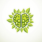 Tree Brain concept, the wisdom of nature, intelligent evolution. Human anatomical brain in a shape of tree with green leaves. Brain feeding with diet products. Vector icon design.