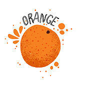 Vector hand draw orange illustration. Slice of orange with juice splashes isolated on white background. Textured orange citrus sketch, juice citrus fruit with word Orange on top. Fresh ripe mandarin fruit.