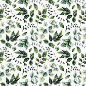 Seamless Pattern of Watercolor Herbs and Leaves