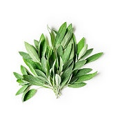 Fresh sage leaves bunch