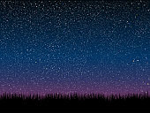Starry night and grass with bright shinny stars. Background, banner.