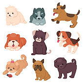 Puppy set with beautiful cute dogs. Different breeds of happy jumping and sitting pets. Husky and bulldog, pug and jack Russell terrier. Vector illustration. Cartoon style.