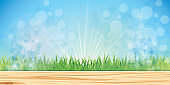 Fairy grass background
