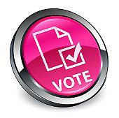 Vote (survey icon) 3d pink round button