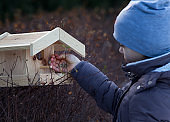 Girl with bird house