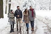 Friends walking dog on snow