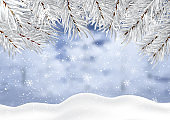 Christmas background with winter snow and tree branches