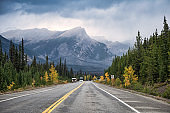 Scenic road trip with rocky mountain in autumn pine forest at Banff national park