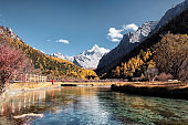 The holy mountain with emerald lake in autumn forest at Yading