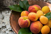 Ripe peaches and apricots on a copper plate and the textural natural wooden background