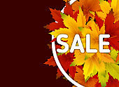 Autumn Sale Background Template, with falling bunch of leaves, shopping sale or seasonal poster for shopping discount promotion, Postcard and Invitation card. Vector illustration Voucher, Banner, Flyer, Promotional Poster