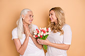 Portrait of charming beautiful curly grey haircut person receive blooming greeting 8-march anniversary feel glad enjoy leisure lifestyle wear trendy t-shirts isolated on pastel background