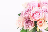 bouquet of delicate roses on a white background