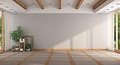 Empty minimalist large room