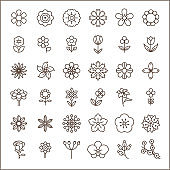 Set of flower and Botanical Icons line style.
