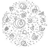 fruits line illustration. Modern style line drawing and background color white.
