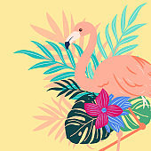 Flamingo Tropical pattern, vivid tropic foliage, with monstera leaf, palm leaves, bird of paradise flower, hibiscus in bloom. modern bright summer print design.