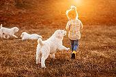 Cute girl playing with albai dog