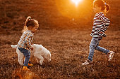 Girls running with alai dog in meadow