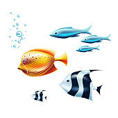 Vector black white tropical fish coral reef fish