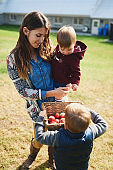 Attractive, millennial mother with cute young children at organic apple orchard during sunny fall day