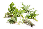 medicinal plants: Various herbs from the garden isolated on a white background