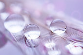 Beautiful transparent water drops or rain water on soft background. Macrophotography. Desktop background. Selective focus.