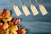 Four brown blank paper price tags or labels set hanging on a rope with dry yellow autumn leaves on the gray wooden background.