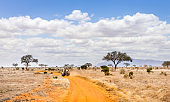 Safari road in Kenya