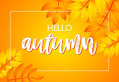Hello autumn poster design with yellow background