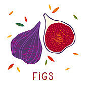 Isolated figs: whole fruit and half sliced on a white background