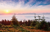 Sunset in the mountains landscape. Dramatic sky. Carpathian of Ukraine Europe