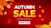 Autumn background with flat leaves. Seasonal lettering. Web banner template. Vector illustration
