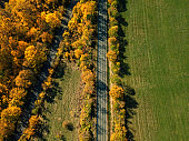 aerial view on sunny autumn landscape