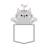 Gray cat, bird in the pocket. Holding hands up. Give me a hug. Cute cartoon animals. Kitten kitty character. Dash line. Pet animal. White background. T-shirt design. Baby collection. Flat design