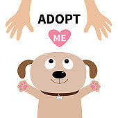 Adopt me. Dog face. Pet adoption. Puppy pooch looking up to human hand, paw print hug. Flat design. Help homeless animal concept. Cute cartoon character. White background. Isolated.