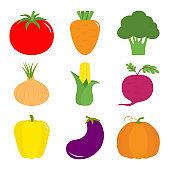 Vegetable icon set. Pepper, tomato, carrot, broccoli, onion, sweet corn, beet, eggplant, aubergine, pumpkin. Fresh farm healthy food. Education card for kids. Flat design. White background. Isolated.
