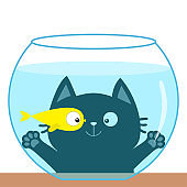 Cat looking through aquarium glass. Playing with gold fish. Cute cartoon kawaii funny baby character. Big eyes. Swimming goldfish. Paw print hand. Flat design. White background.