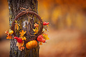 Round wreath with on natural tree on fall background. Sunny autumn day, daylight. Copy space