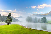 Calm morning on the mountains lake landscape with tree and bench, fog, green lawn