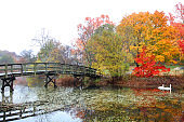 Autumn in Plymouth, New Hampshire